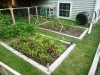 2009 - Raised Beds
